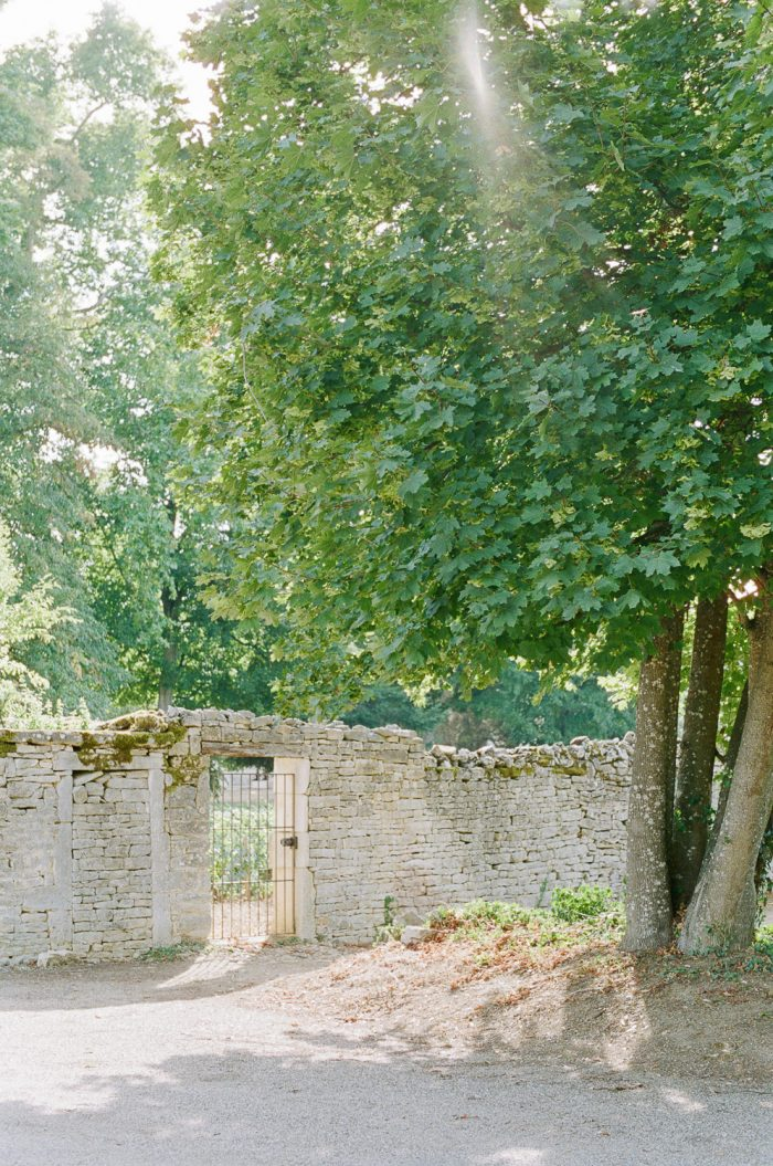 Wedding Photo of Trees & Wall