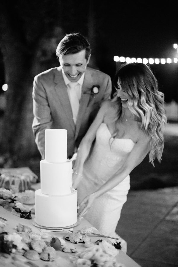 Tenley Molzahn and Taylor Leopold Wedding Reception cake cutting